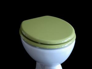 Toilettendeckel_mossgrün