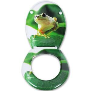 Toilettendeckel_Frosche