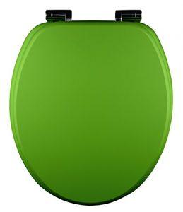 Giftgrüner Toilettendeckel