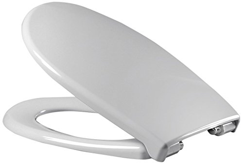 Sanifri 470011124 WC-Sitz Dilos grau, Soft-Close / einhändig abnehmbar, antibac, Made in Germany