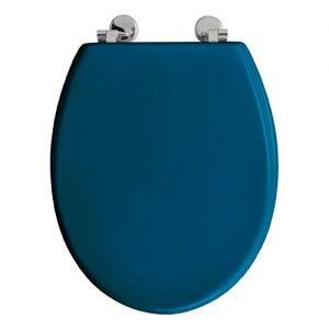 Toilettendeckel blau
