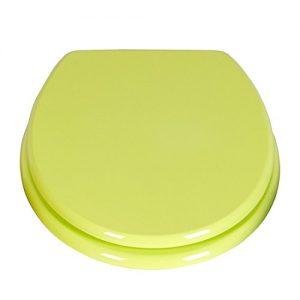 Toilettendeckel grün