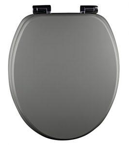 Toilettendeckel mit Absenkautomatik