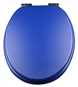 WC-Sitz blau
