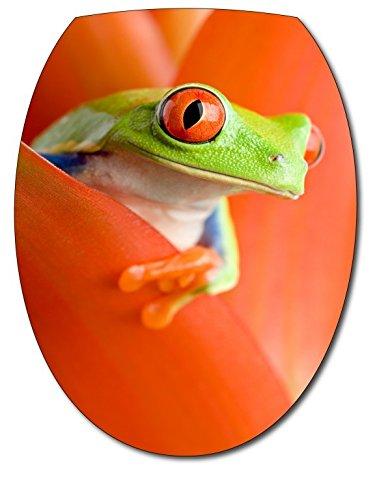 stickersnews–Sticker WC-Sitz Frosch
