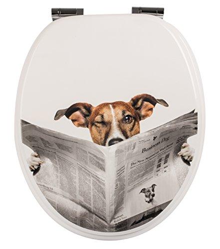 WC-Sitz Dekor Lesestoff   Toilettensitz   WC-Brille aus Holz   Soft-Close-Absenkautomatik   Toilettendeckel mit Metall-Scharnier   Fast-Fix-Schnellbefestigung Klodeckel